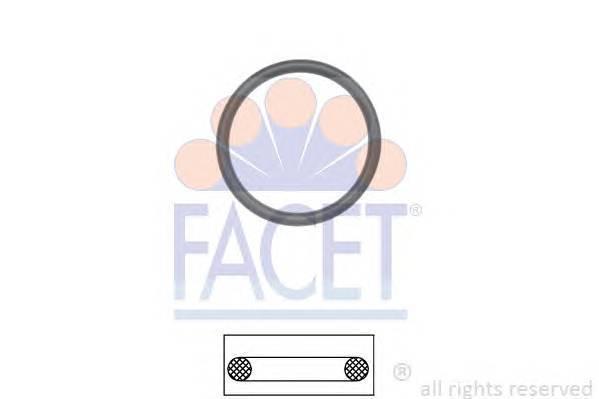 FACET 79576