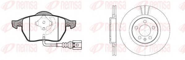 REMSA 8390.06